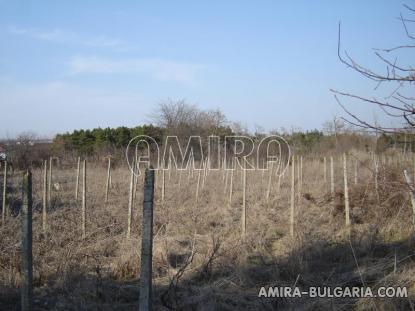 House in Bulgaria 9km from Balchik vineyards